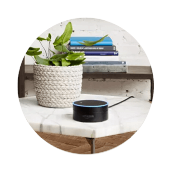 DISH Hands Free TV - Control Your TV with Amazon Alexa - Seven Springs, NC 28578, NC - Darryl's Satellite Service - DISH Authorized Retailer